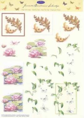 3D Etappen-Bogen-JBS 03- Brinkman-Blumen-Seerose  - Bild vergrößern