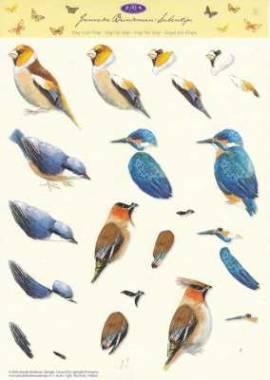 3D Etappen-Bogen-Janneke Brinkman-Vögel-Eisvogel- JBS 05 - Bild vergrößern