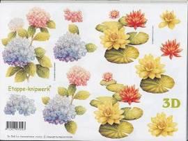 3D Etappen-Bogen-Blumen-Seerosen-416933 - Bild vergrößern