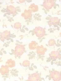 Motiv-Papier -Karton-Romantic-Rosen-1-A5