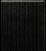 Zier-Sticker-Bogen-glatte dünne Linien-schwarz/gold-1082schg