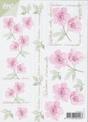 Joy 3D Bogen Blumen - Rosa mit Text DIN A5-6010-0014