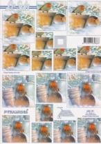 Pyramiden Bogen-Rotkehlchen im Schnee-LeSuh-630181