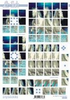 3D Squares Bogen-Wildpferde-Schimmel -LeSuh-630203