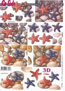 3D Etappen-Bogen-Seesterne -777528