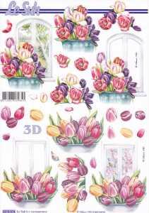 3D Etappen-Bogen-8215574-Blumen -Tulpenfenster