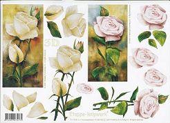 3D Etappen-Bogen-Rosen in Weiß mit Hintergrund-4169160