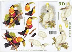 3D Etappen-Bogen-Exotische Vögel-Tucan/Kakadu-4169197