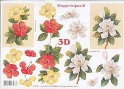 3D Etappen-Bogen-Edle Blüten-4169428a