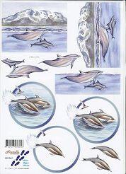 3D Etappen-Bogen-Delfine-821541