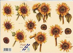 3D Etappen-Bogen-821564-große Sonnenblummen