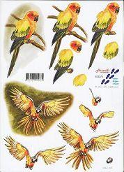 3D Etappen-Bogen-Papagei auf Ast/ Papagei im Flug-821574